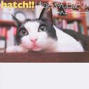 オンライン書店ビーケーワン:hatch!! 2