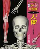 オンライン書店ビーケーワン:骨と筋肉大図鑑 1 人体 「体」と「運動」を調べよう!