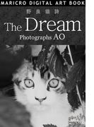 野良猫詩 The Dream(MARICRO DIGITAL ART BOOK)