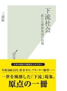下流社会~新たな階層集団の出現~(光文社新書)