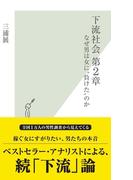 """下流社会 第2章~なぜ男は女に""""負けた""""のか~(光文社新書)"""