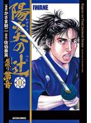 陽炎の辻 居眠り磐音11(アクションコミックス)