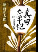真田太平記(十一)大坂夏の陣