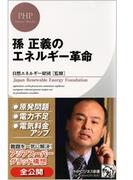 孫 正義のエネルギー革命(PHPビジネス新書)