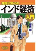 知識ゼロからのインド経済入門(幻冬舎単行本)