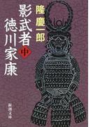 影武者徳川家康(中)