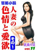 人妻の色情と愛欲 その1(Digital新風小説)