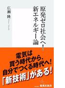 原発ゼロ社会へ! 新エネルギー論(集英社新書)