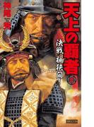 天上の覇者 3(歴史群像新書)