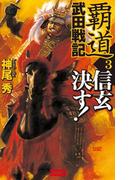 覇道武田戦記3(歴史群像新書)