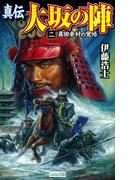 真伝 大坂の陣 2(歴史群像新書)