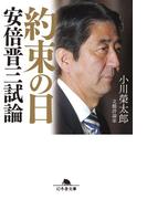 約束の日 安倍晋三試論(幻冬舎文庫)