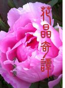 花晶奇譚(書肆月夜堂)