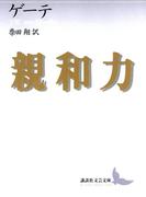 親和力(講談社文芸文庫)