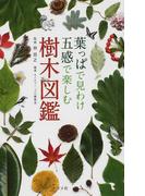 葉っぱで見わけ五感で楽しむ樹木図鑑