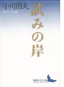 試みの岸(講談社文芸文庫)