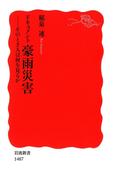 ドキュメント豪雨災害(岩波新書)
