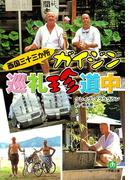 西国三十三か所 ガイジン巡礼珍道中(小学館文庫)(小学館文庫)