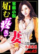 【官能小説】妬む疼き妻(Digital小説新撰)
