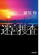 迷宮捜査(光文社文庫)