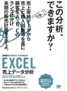 EXCEL売上データ分析 [ビジテク] 2013