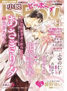 小説b-Boy 春の発情エロス 甘くとろける花嫁特集(2015年3月号)(小b)