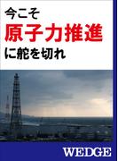 今こそ原子力推進に舵を切れ(WEDGEセレクション)