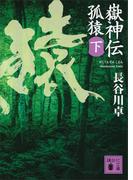 嶽神伝 孤猿(下)(講談社文庫)