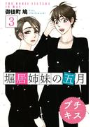堀居姉妹の五月 プチキス(3)