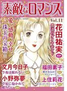 素敵なロマンス Vol.11(素敵なロマンス)