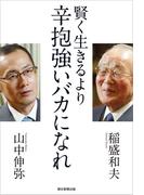 賢く生きるより 辛抱強いバカになれ(朝日新聞出版)