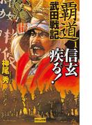 【全1-3セット】覇道武田戦記(歴史群像新書)