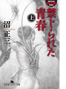【全1-3セット】禁じられた青春(幻冬舎アウトロー文庫)