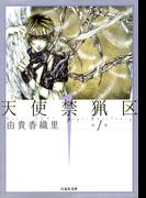 【全1-10セット】天使禁猟区(白泉社文庫)