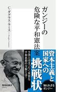 ガンジーの危険な平和憲法案(集英社新書)