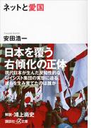ネットと愛国(講談社+α文庫)