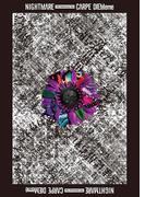 ナイトメア公式ツアーパンフレット 2015 15th Anniversary Tour CARPE DIEMeme(black)