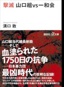 撃滅 山口組VS一和会(講談社+α文庫)