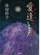 愛逢い月(集英社文庫)