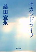 セカンドライフ(角川文庫)