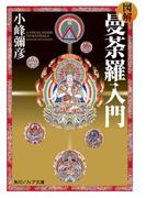 図解 曼荼羅入門(角川ソフィア文庫)