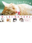 【期間限定50%OFF】しまい忘れた猫(単行本(KADOKAWA / 角川マガジンズ))