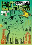 ビッグコミックオリジナル増刊 2016年5月増刊号