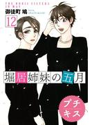 堀居姉妹の五月 プチキス(12)