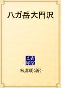 八ガ岳大門沢(青空文庫)