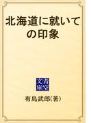 北海道に就いての印象(青空文庫)