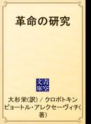 革命の研究(青空文庫)