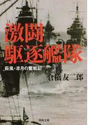 激闘駆逐艦隊 萩風・凉月の奮戦記