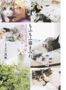 もふもふ猫まみれ とよたさんちのマブ猫22のハッピールール