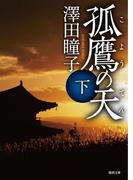 孤鷹(こよう)の天 下(徳間文庫)